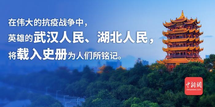 [天富主管]皮书英雄的武汉人天富主管民湖北人民图片