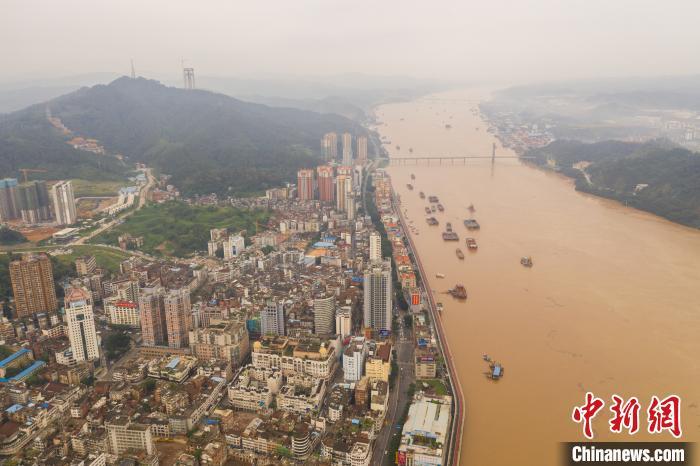 滚滚洪水围住梧州城。何汉文 摄