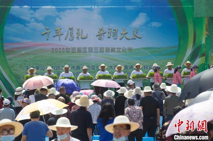 """以""""千年厚礼 晋祠大米""""为主题的晋源区第三届插秧文化节正在举行。 张云 摄"""