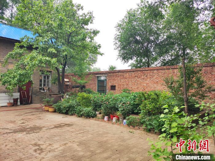 陈长珍和老伴生活在一起,他们的院子里长满了牡丹、月季、芍药。 张月 摄