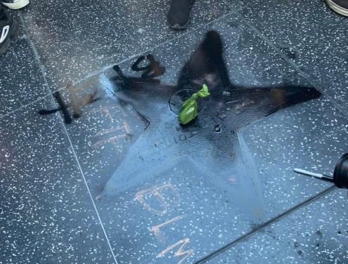 星星惨遭破坏,绿袋子里疑似为狗屎 来源:社交媒体