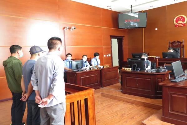 黑龙江大庆市首例野生动物保护领域刑事附带民事公益诉讼案开庭审理