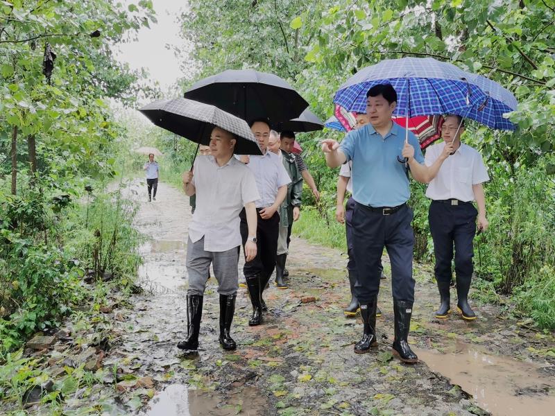 暴雨肆虐荆楚大地  湖北移动全力抢险保卫通信生命线