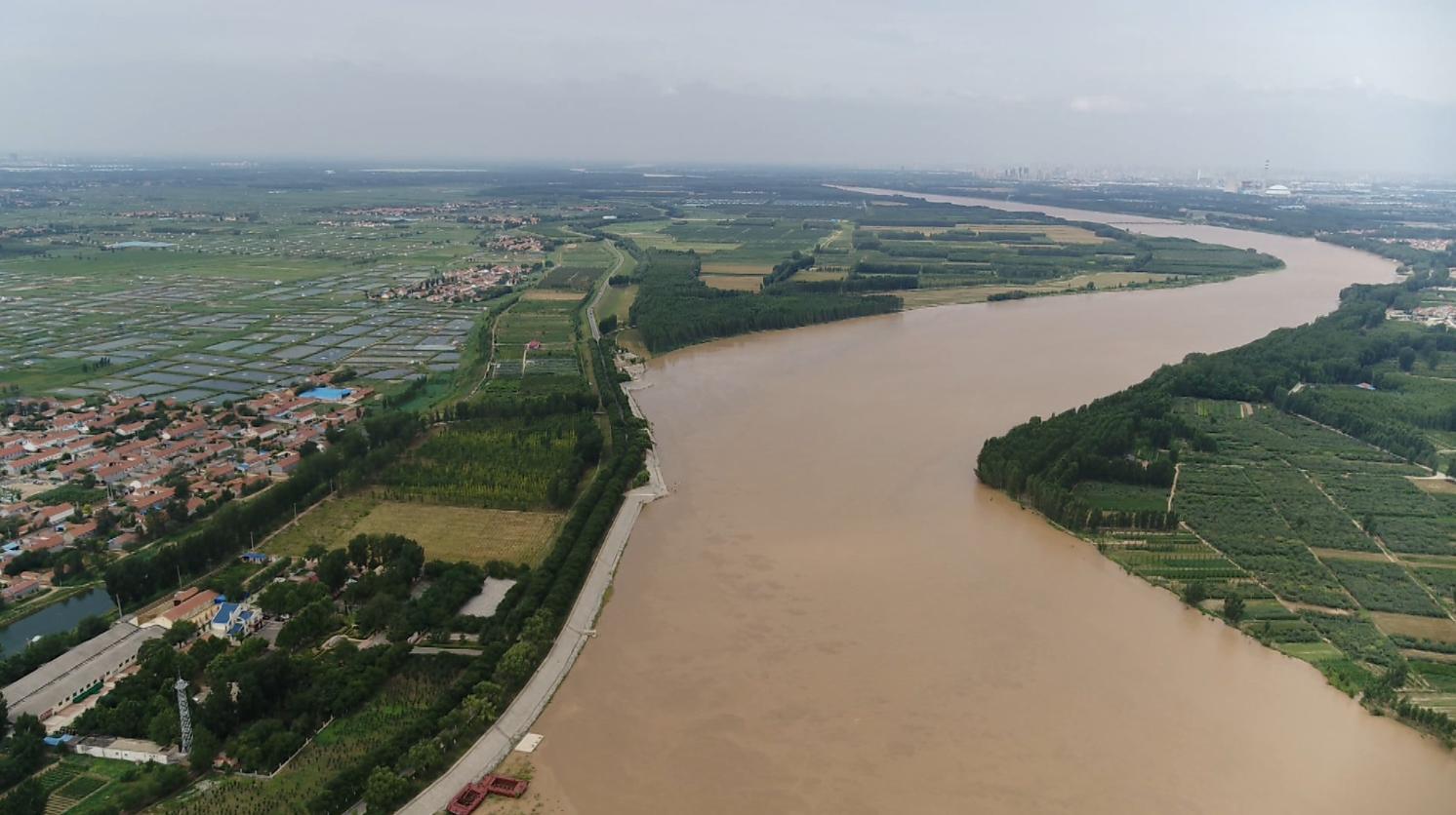 """滨州今年政协""""一号提案""""聚焦我们的母亲河"""