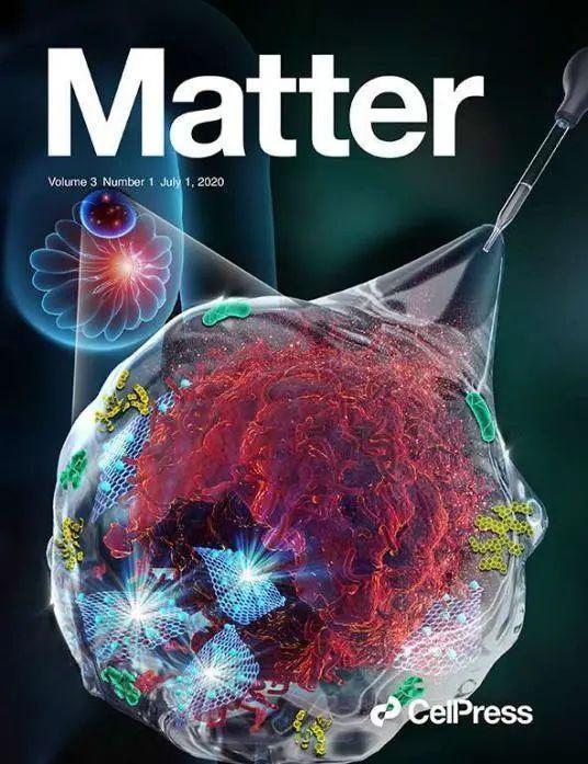 杭师大谢恬教授团队发明锗烯纳米水凝胶药物递送系统,用于肿瘤手术辅助治疗新策略