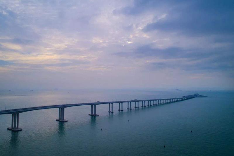 预告|乘风破浪,港珠澳大桥是如何保护中华白海豚的?