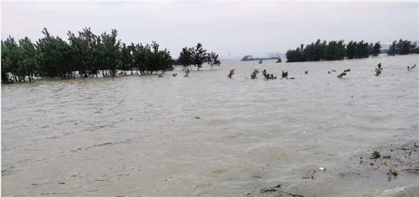 安徽宿松紧急转移安置群众8000余人