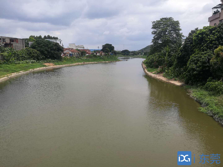 决胜国考断面水质 全面稳定达标⑨ 水清岸美,小海河重现往昔风光