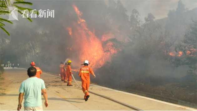 [杏悦]江120亩林杏悦地突发火灾所幸无人图片