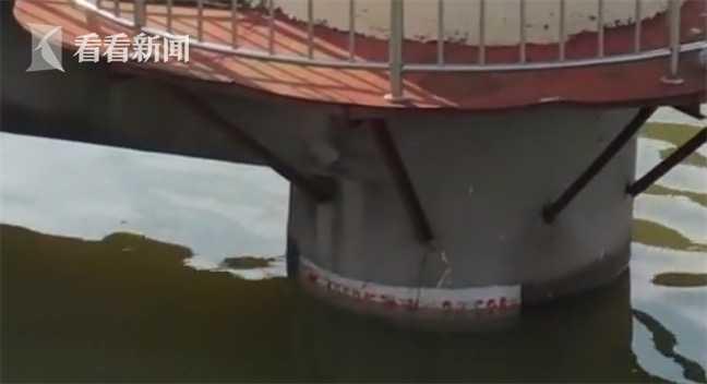 视频|江西鄱阳:鄱阳湖水位突破历史最高值图片