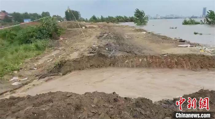 湖北黄梅滨江圩平垸行洪 转移安置1730人