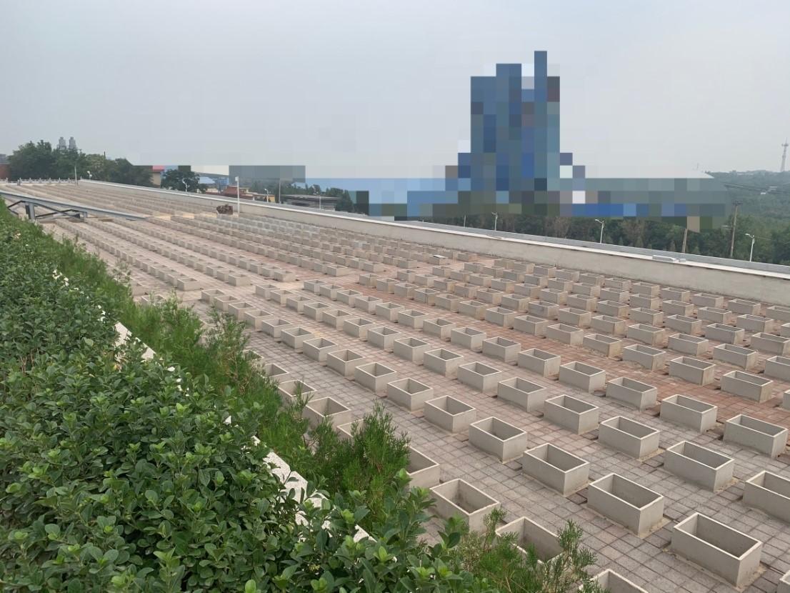「蓝冠官网」山一27蓝冠官网0亩公墓被指违规建设售图片