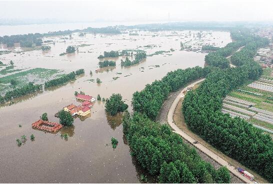 黄梅滨江圩平垸行洪之后——黄广大堤小池段66年来首次迎洪水