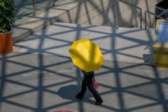 广州启动高温Ⅲ级应急响应 最高温度超40℃