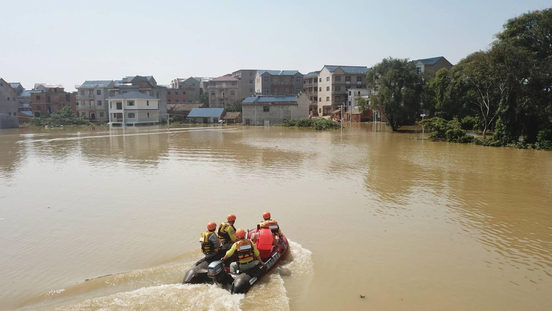 鄱阳县莲湖乡龙口村遭洪水围村,无人员伤亡图片