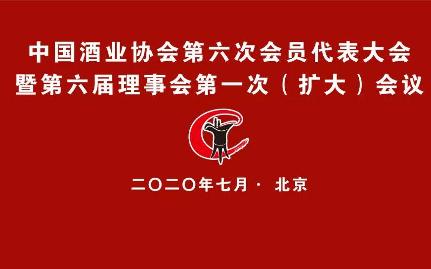 杏悦:中酒协第六次会员代表大杏悦会改为线图片