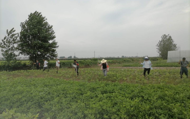 「杏悦」江洲镇留下的村民继续杏悦抗洪图片