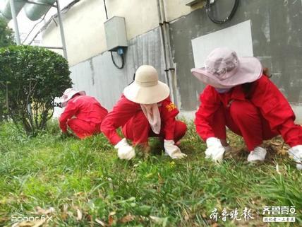 滨南服务部:水利创城周末忙 绿地拓荒展新颜
