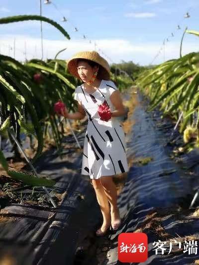 名称:三亚东单河农民互助社:服务农