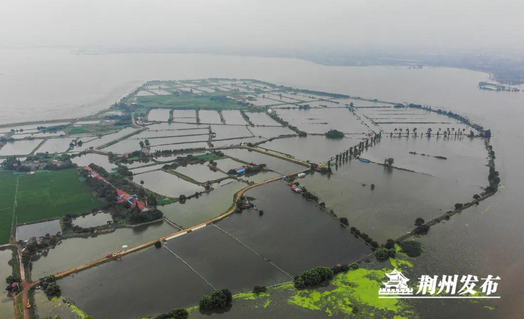 荆州杏悦入梅经历6次强降雨两百余万人次,杏悦图片