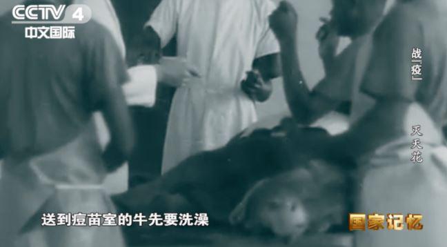 [杏悦]年疾病杏悦消亡史中我看到了这场新冠图片