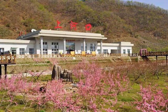 △桃花盛开时节的上河口车站
