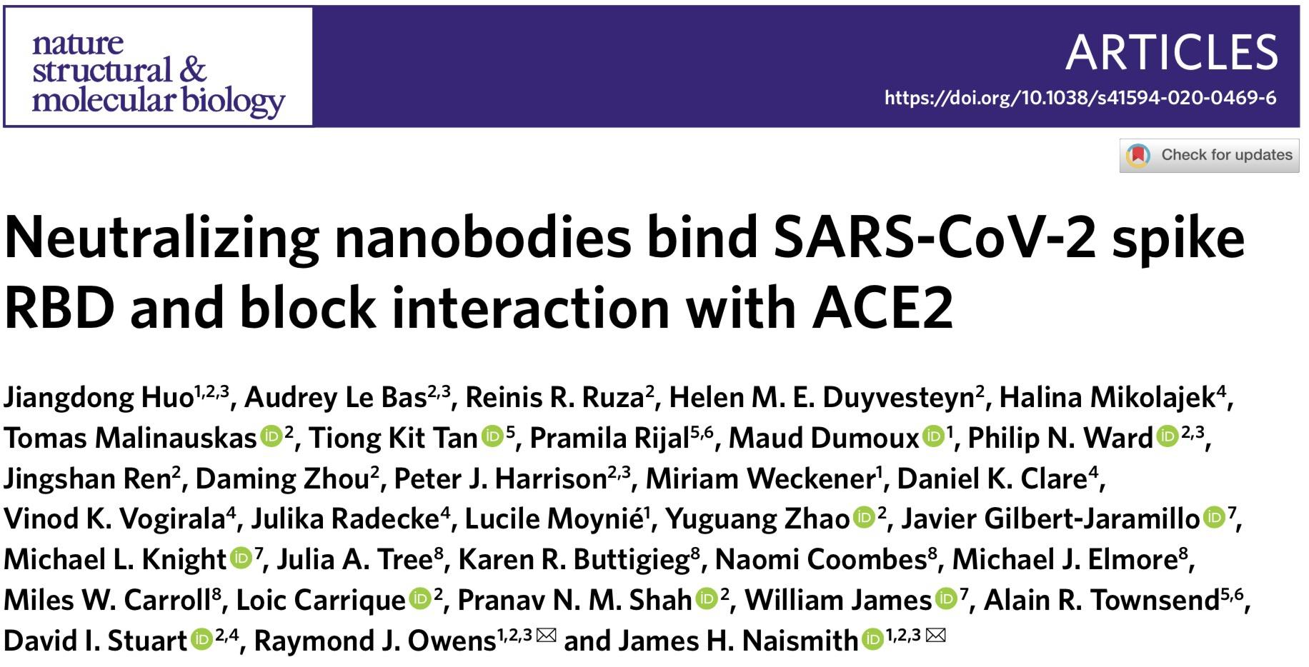 牛津大学:源自大羊驼的两种纳米抗体可中和新冠病毒