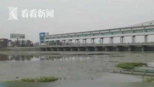 杏悦:徽杏悦持续强降雨淮河王家坝段图片