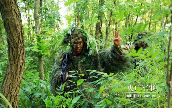 """""""猎人""""对决,荒野争锋!看海军陆战队某旅狙击手集训"""