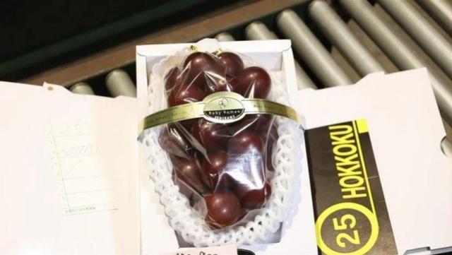 日本一串红葡萄拍得130万日元天价,每颗都大如乒乓球