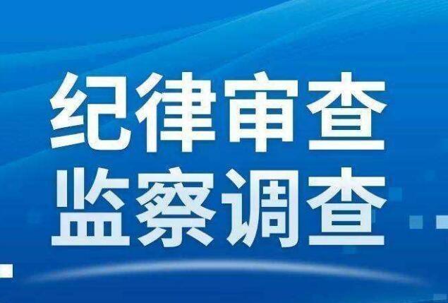 青田县环境卫生管理处主任陈宰学接受纪律审查和监察调查
