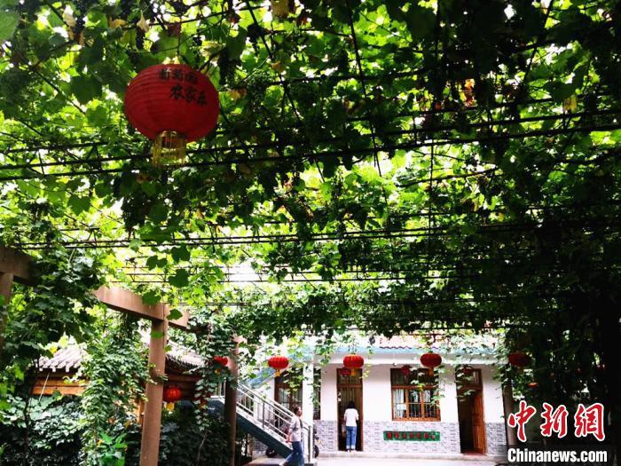 http://www.lzhmzz.com/dushujiaoyu/117789.html