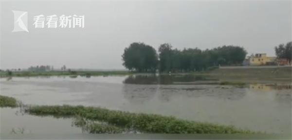 【股票配资】视股票配资频|安徽淮河王家坝段或迎超警图片