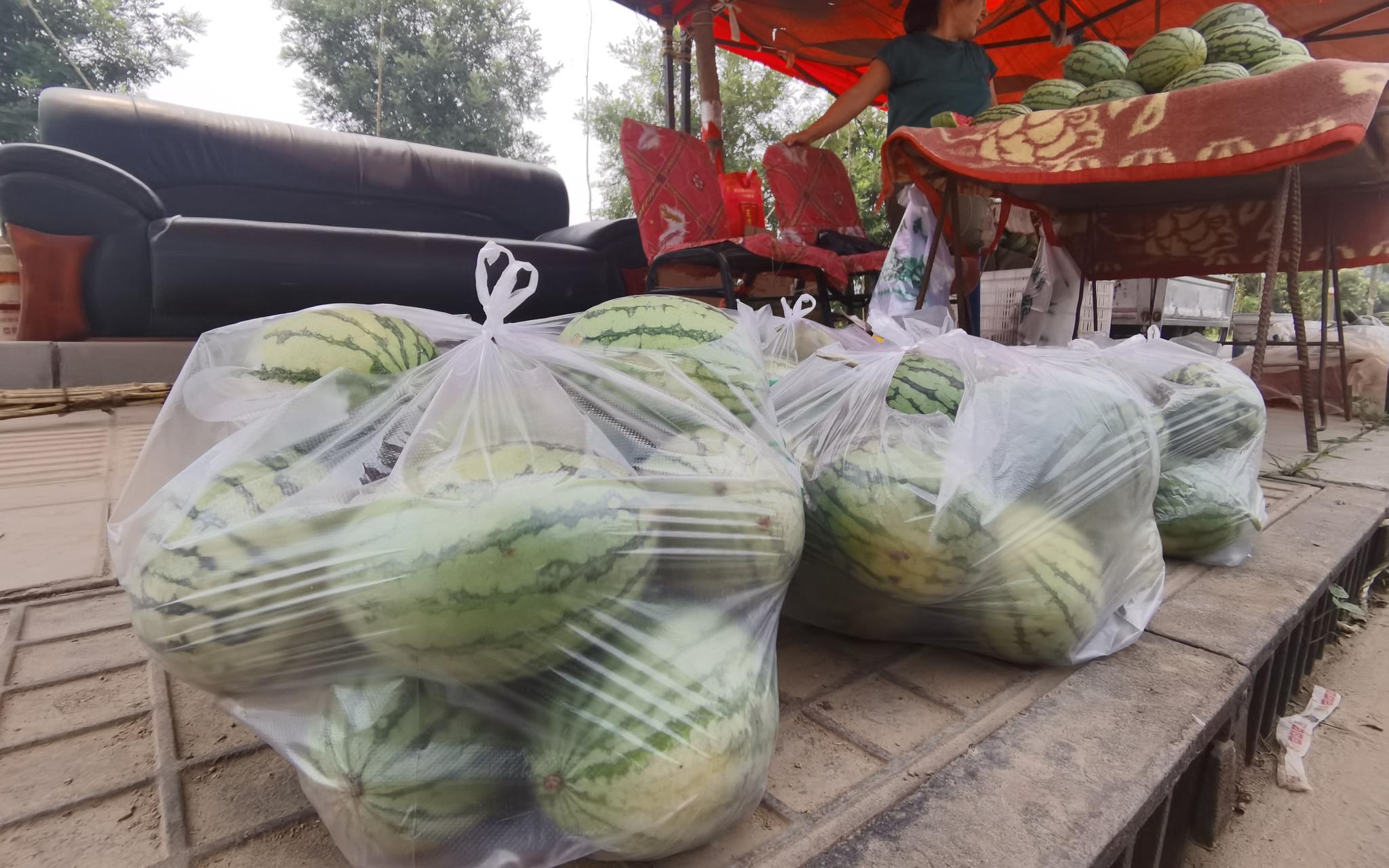 已经被客户订出的西瓜装好了袋子。新京报记者 王颖 摄