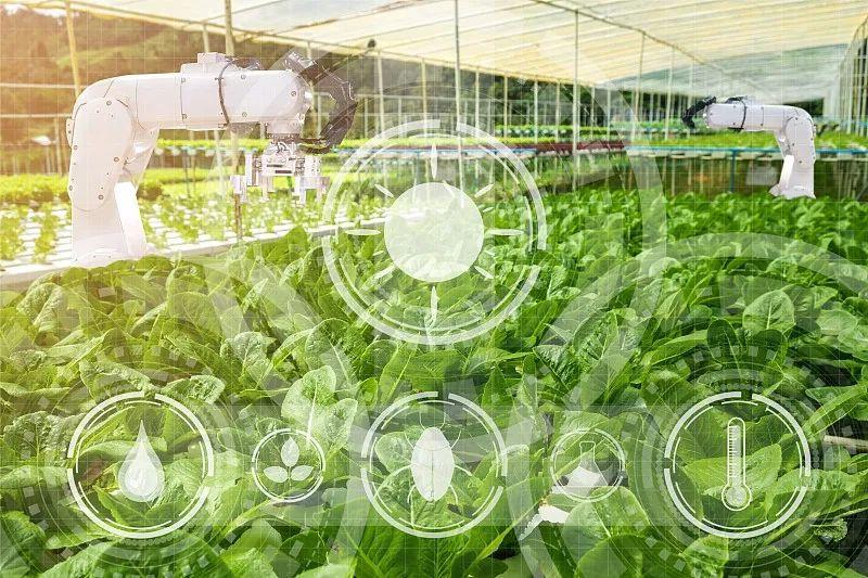 农业科技社会化服务体系建设如何加强?七部门发文部署