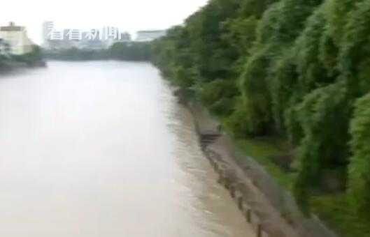 视频|湖北恩施:水位仍处高位 城区积水开始消退图片