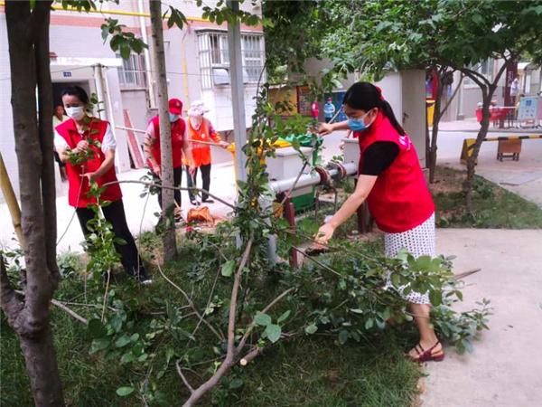 """郑州市中原区须水街道机关支部举行""""清洁家园、美丽社区""""主题党日活动"""