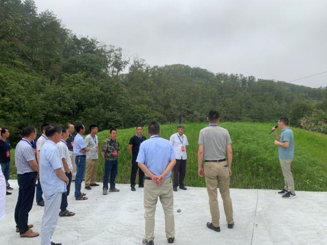 岛石镇人大代表团视察政府民生实事项目