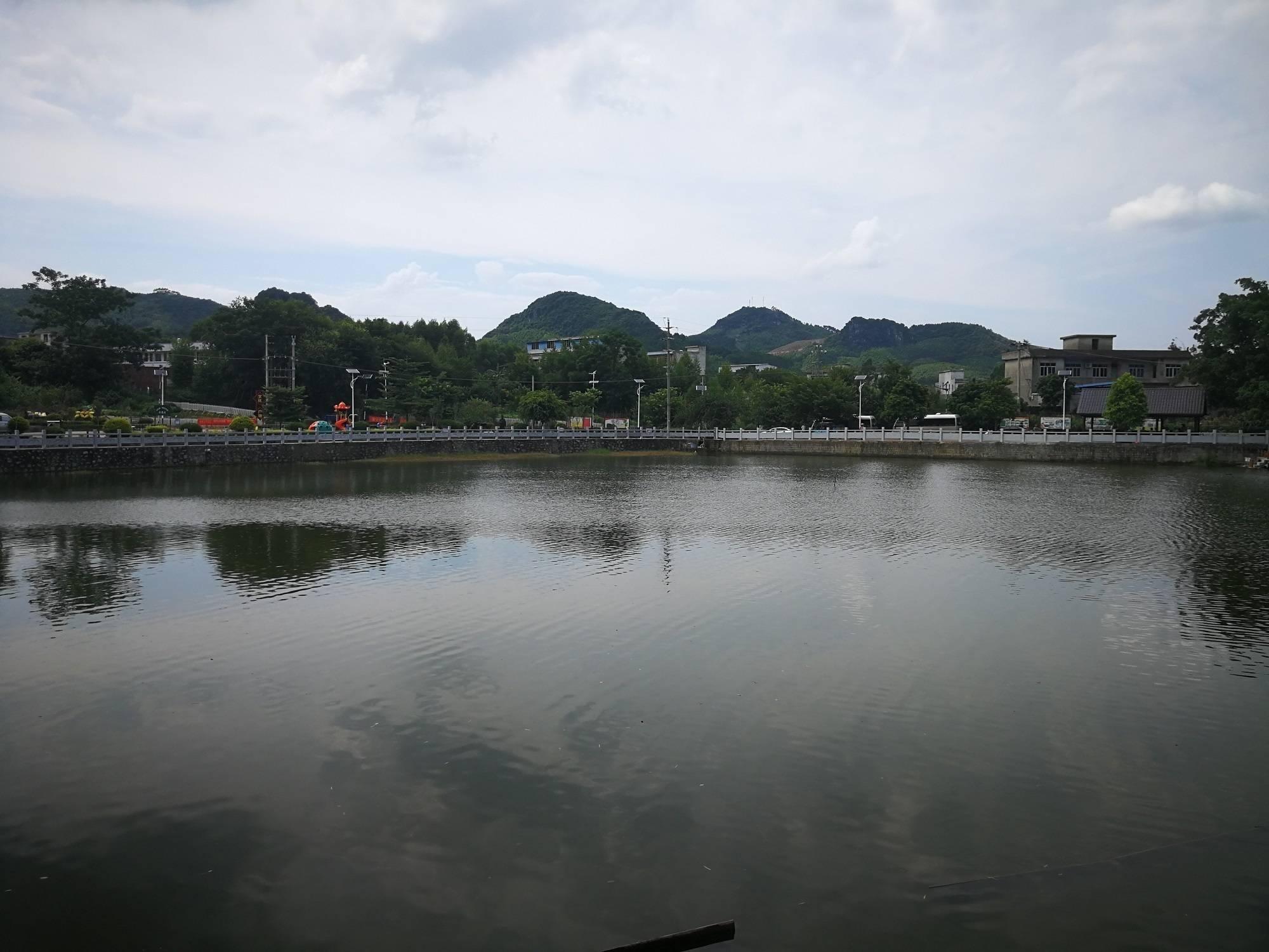 犀牛湖的清水给香洲县大仙村带来了什么