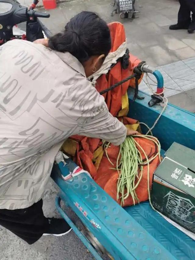 她摘下新鲜的长豇豆送派出所致谢秀洲民警