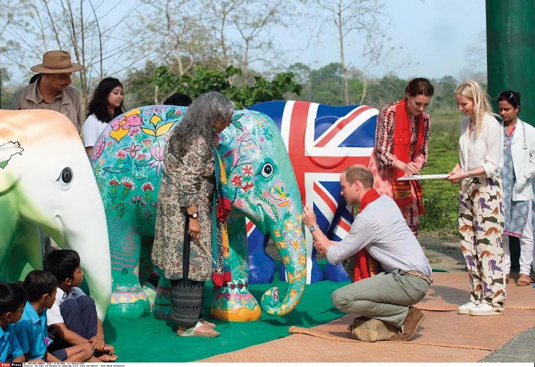 ▲资料图片:2016年4月13日,英国威廉王子和凯特王妃参观印度公园基金会。