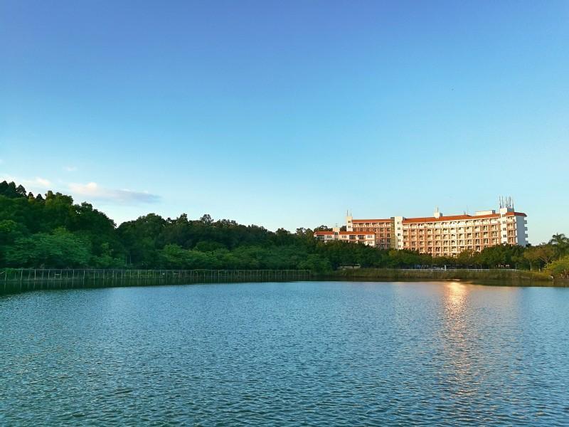 广东财经大学:建设大湾区一流财经大学