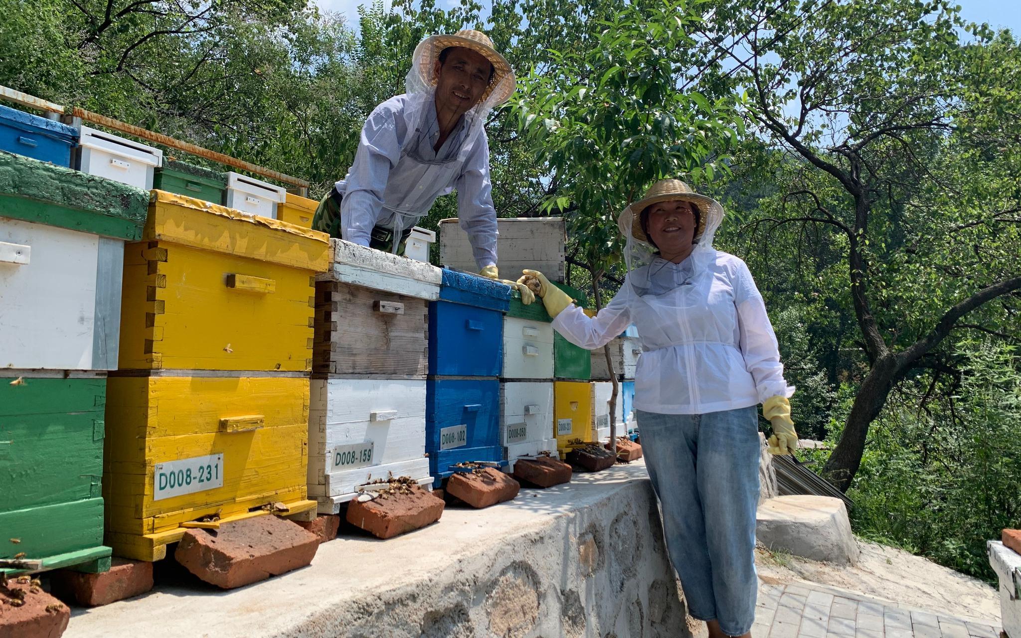 杏悦,库边的养蜂人十一万杏悦蜂群酿出甜蜜的事图片