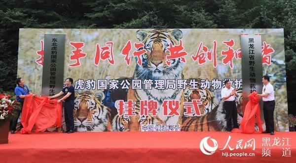 全球老虎日东北虎豹国家公园管理局野生动物救护中心挂牌