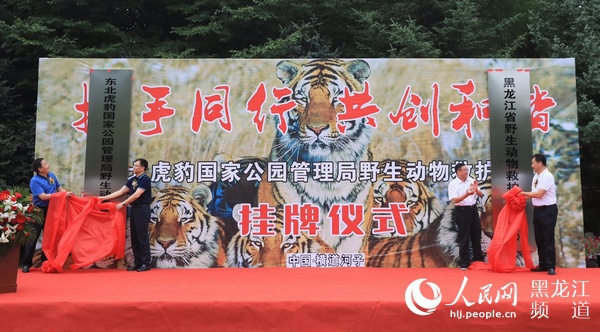 全球老虎日 东北虎豹国家公园管理局野生动物救护中心挂牌