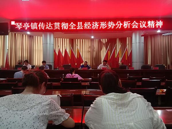 萍乡莲花县琴亭镇迅速传达贯彻全县经济形势分析会议精神