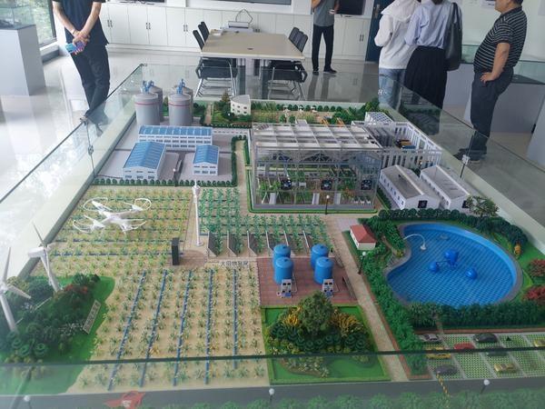 """来鹤壁这个硅谷看""""互联网+农业""""怎么做"""
