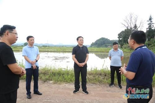 武宁县委书记杜少华深入甫田乡调研指导灾后重建、脱贫攻坚、产业发展等工作