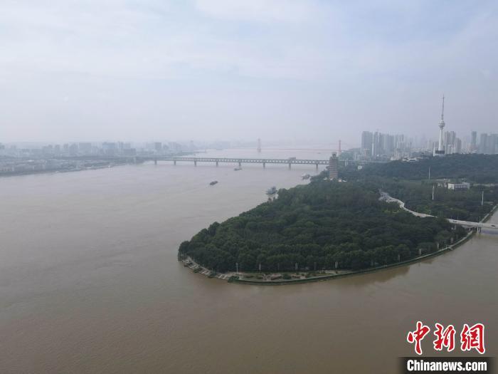 """从两江交汇南岸嘴看""""一级战备""""下的武汉防汛图片"""