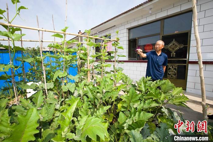 图为7月中旬,白高山介绍院子里种植的蔬菜。 中新社记者 张云 摄
